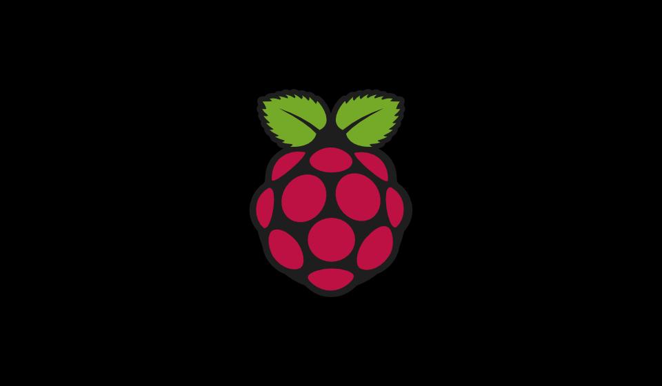 Logo Raspberry